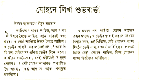 Language pdf in nepali bible